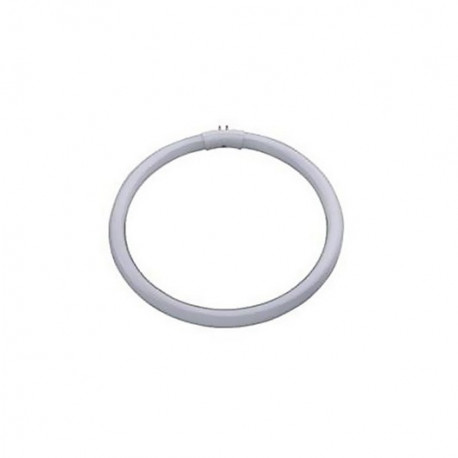 TUBE FLUO CIRCULAIRE 22 W LID